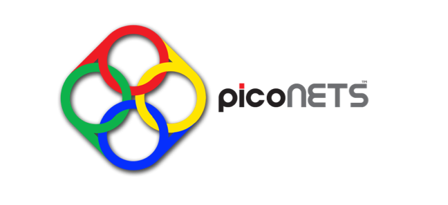 PicoNets
